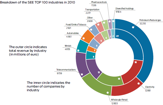 Breakdown of the SEE TOP 100 industries in 2010